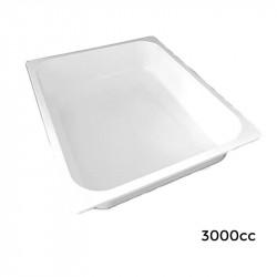 8GS500 Bandeja Gastron. 320X260X50 - 3000 cc -210